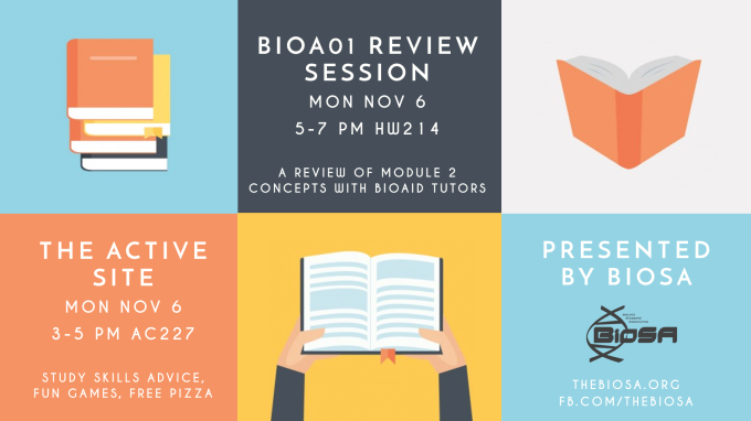 BIOAO1 Review Session and Active Site poster