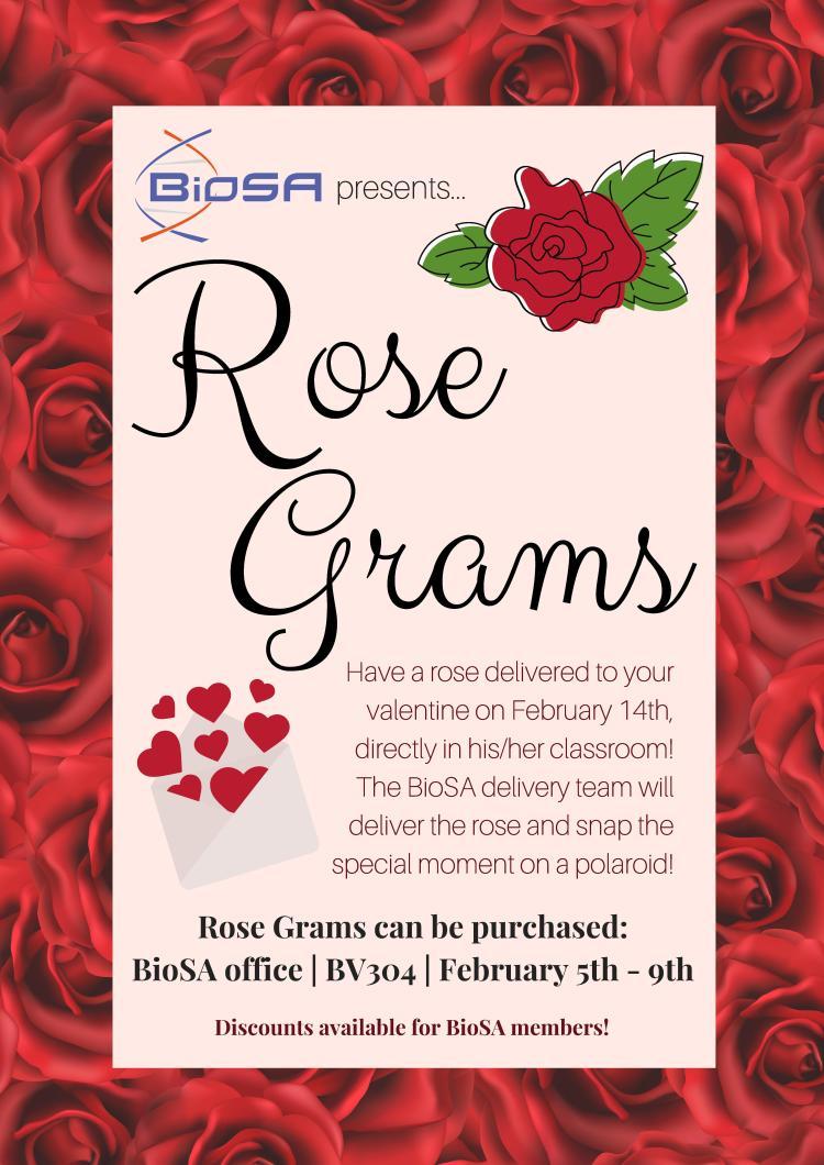 BioSA Valentine's Day Rose Grams Poster